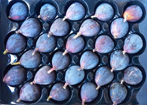 The Case for Figs