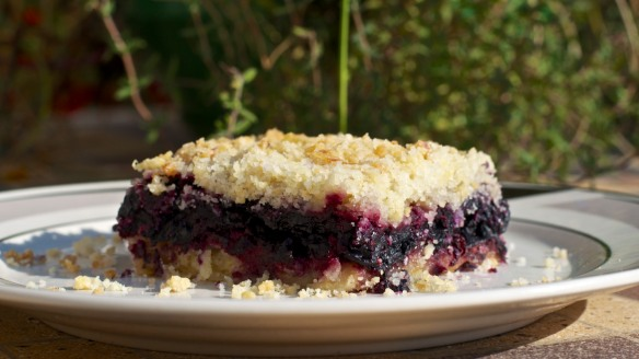 Blueberry-Lemon Slice