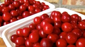 Cherries Jammed