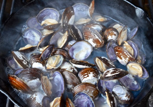 Grilled Clams 1