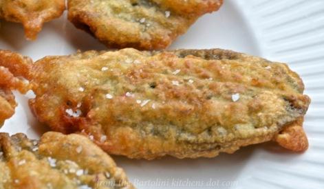 Fried Sage Deja Vu
