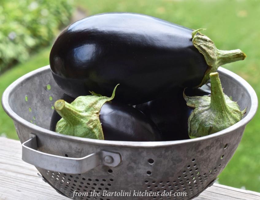 The Day's Eggplant Harvest