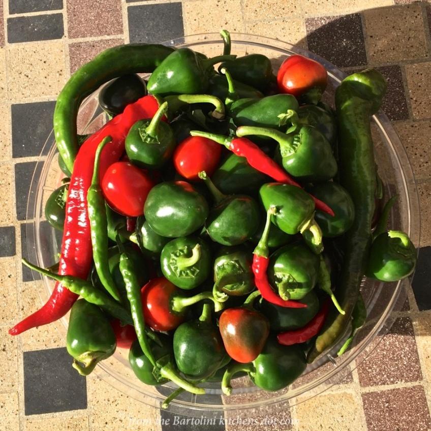 hot-pepper-relish-1
